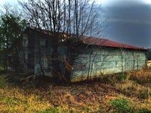 Un granero viejo invadido Imagen de archivo libre de regalías