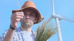 Un granjero comprueba el trigo en el fondo de una turbina de viento Tecnologías ambientales modernas en agricultura almacen de metraje de vídeo