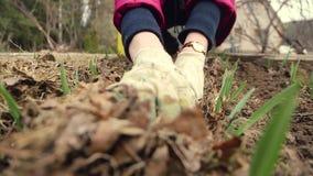Un granjero de la mujer en ajo cultivado huerto metrajes