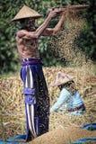 Un granjero de sexo masculino que tamiza granos a través del tamiz fotos de archivo libres de regalías