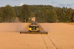 Un granjero en su cosechadora Imagen de archivo