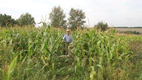 Un granjero mayor en sombrero sale del campo de maíz y muestra el pulgar para arriba metrajes