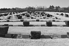 UN Graveyard Stock Images