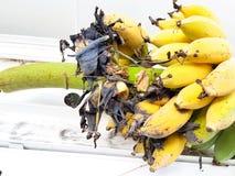 Un groupe de bananes mûres sont mordus Photographie stock