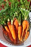 Un groupe de carottes dans la passoire blanche Photos stock