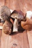 Un groupe de champignons frais se trouvant sur le fond en bois photo libre de droits