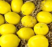Un groupe de citrons jaunes Images stock