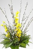 Un groupe de fleur pour Pâques avec le saule et le forsythia de chat photos stock
