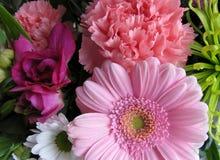 Un groupe de fleurs Image libre de droits