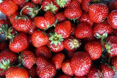Un groupe de fraises, plan rapproché photo libre de droits