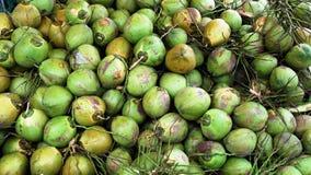 Un groupe de jeune noix de coco verte Photographie stock