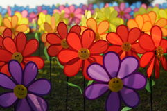 Un groupe de moulin à vent de fleur de jouets Photographie stock libre de droits