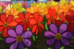 Un groupe de moulin à vent de fleur de jouets Photo libre de droits