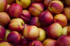 Un groupe de nectarines colorées Images stock
