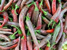 Un groupe de poivre de /poivron d'un rouge ardent Photographie stock