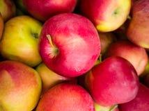 Un groupe de pommes sur la table images stock