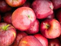 Un groupe de pommes sur la table photo stock