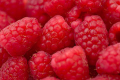 Un groupe de raspberrys Photos stock