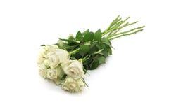 Un groupe de roses blanches Photographie stock libre de droits