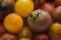 Un groupe de tomates-cerises ensemble Photos libres de droits