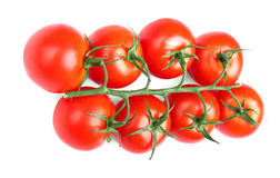 Un groupe de tomates mûres d'isolement sur un fond blanc Tomates rouges fraîches Autumn Vegetables Récolte et concept de jardinag Photographie stock