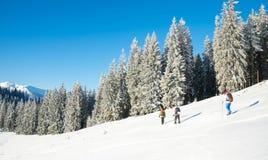 Un groupe de touristes avec des sacs à dos augmentant en montagnes d'hiver Photo libre de droits
