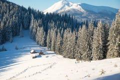 Un groupe de touristes avec des sacs à dos augmentant en montagnes d'hiver Photo stock