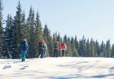 Un groupe de touristes avec des sacs à dos augmentant en montagnes d'hiver Photographie stock