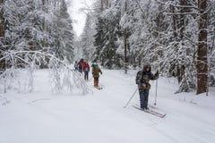 Un groupe de touristes dans le voyage de ski, le 22 février 2016 Photo libre de droits