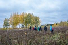 Un groupe de touristes marchant par l'herbe grande Image libre de droits
