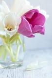 Un groupe de tulipes blanches et violettes fraîches fleurit dans un verre de W Photo stock