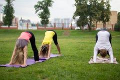 Un groupe de yogis dans une pose gracieuse pendant des poursuites extérieures Photo stock
