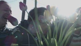 Un grupo de amigos en la risa del campo y se divierte La gente joven se ríe del fondo de la luz del sol y del tulipán metrajes