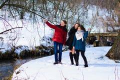 Un grupo de amigos hace el selfie en el invierno cerca del río imágenes de archivo libres de regalías