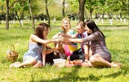 Un grupo de amigos jovenes atractivos en comida campestre Foto de archivo libre de regalías