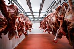 Un grupo de carne cruda tajada que cuelga y arreglar y que procesa en un depósito en un almacenamiento, en una fábrica de la carn imágenes de archivo libres de regalías