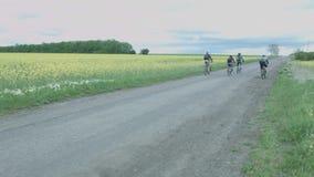 Un grupo de ciclistas viaja a lo largo del camino más allá de un campo amarillo Licencia de los turistas en las bicicletas en el  almacen de video