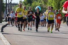 Un grupo de corredores de maratón imágenes de archivo libres de regalías