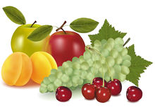 Un grupo de fruta. Foto de archivo