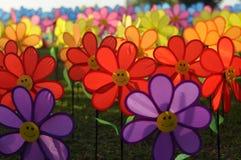 Un grupo de molino de viento de la flor de los juguetes Fotografía de archivo libre de regalías