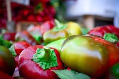 un grupo de pequeñas pimientas italianas frescas Fotografía de archivo