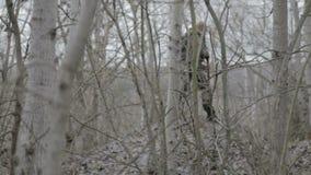 Un grupo de saboteadores del explorador realiza la tarea almacen de metraje de vídeo