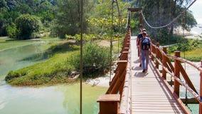 Un grupo de turistas con las mochilas va en puente colgante imagen de archivo