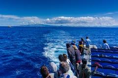 Un grupo de turistas en un viaje de observación de la ballena en el oce atlántico imagenes de archivo