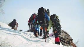 Un grupo de turistas sube una pequeña colina rocosa Primer, visión trasera metrajes