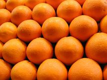 Un gruppo di arance Immagine Stock