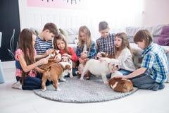 Un gruppo di bambini che giocano con il bulldog dei cuccioli nella scuola materna Immagini Stock