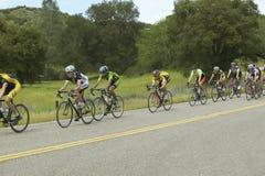 Un gruppo di bicyclists della strada Fotografia Stock