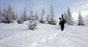 Un gruppo di camminare degli snowboarders Immagini Stock Libere da Diritti