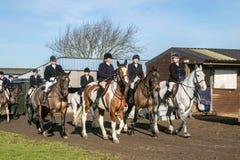 Un gruppo di cavalieri inglesi pronti per caccia di resistenza con i segugi Immagini Stock